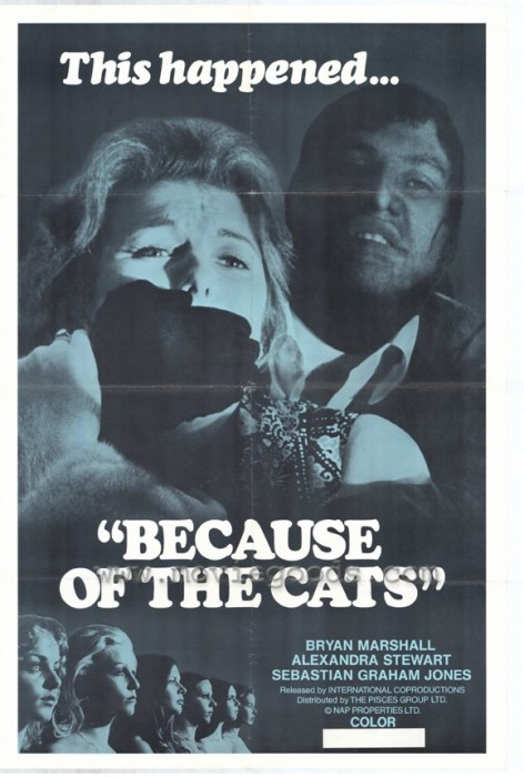 Because of the Cats (1973) cover