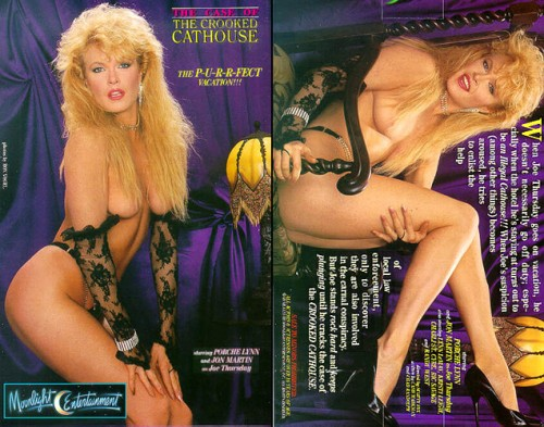 Case of the Crooked Cathouse (1988) cover