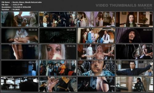 Karate, Kusse, blonde Katzen! (1974) screencaps