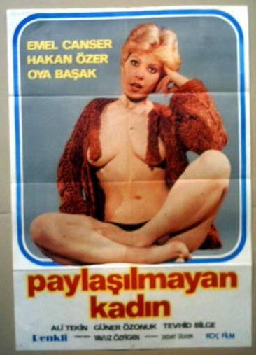 Paylasilmayan Kadin (1980) cover