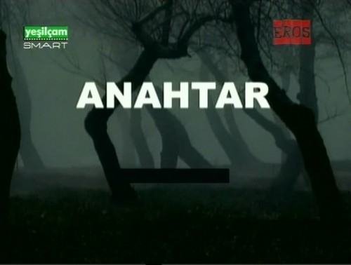 Anahtar (1979) cover