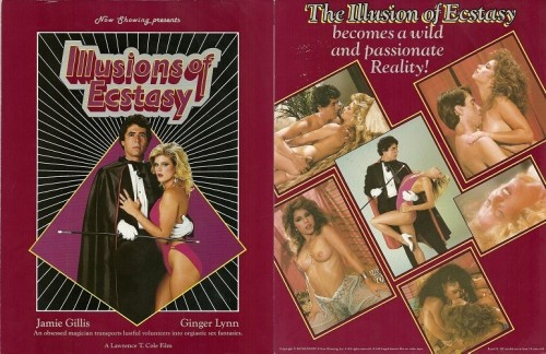 Illusions Of Ecstasy (1984) cover