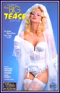 The Big Tease 1 (1989) cover