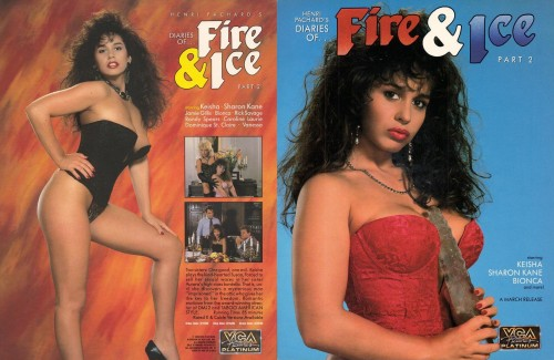 The Diaries Of `Fire And Ice` 2 (1989) cover