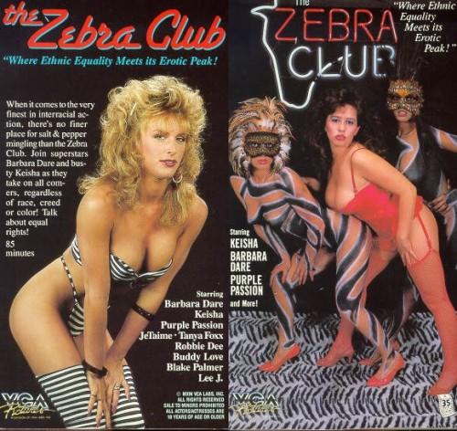 Zebra Club (1986) cover