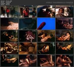 Driller - A Sexual Thriller XXX (1984) (DVD) screenshot 2