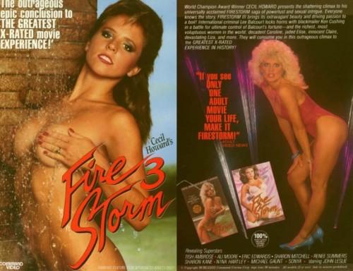 Firestorm 3 (1987) cover