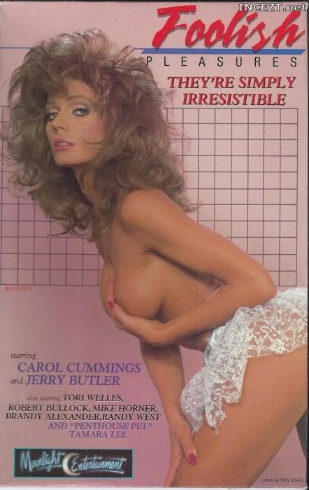 Foolish Pleasures (1988) cover