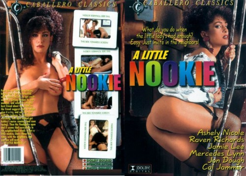 A Little Nookie (1992) cover