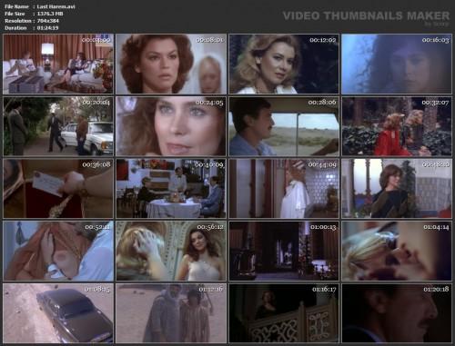 Last Harem (1981) screencaps