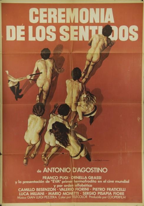 La cerimonia dei sensi (1979) cover