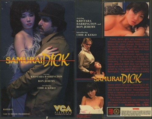 Samurai Dick (1984) cover