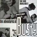 The Adventures of Busty Brown (1967) cover
