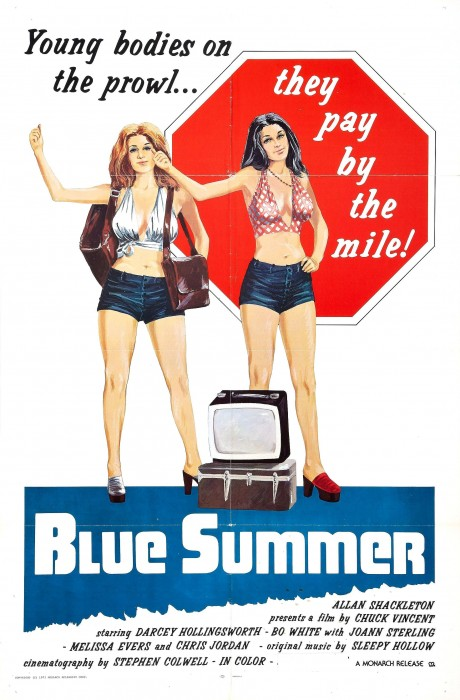 Blue Summer (1973) cover