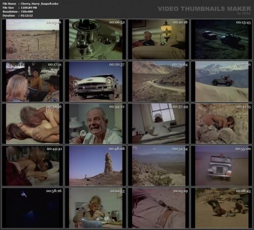 Cherry, Harry & Raquel! (1970) screencaps
