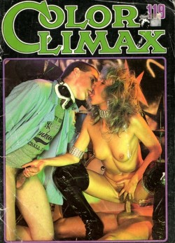 Color Climax 119 (Magazine) cover