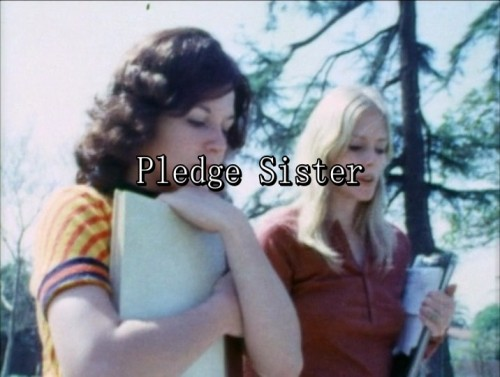 Pledge Sister (1973) cover