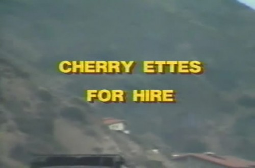 Cherry Ettes for Hire (1984) cover
