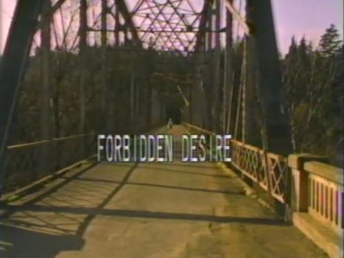 Forbidden Desire (1982) cover