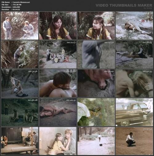 Convicts Women (1973) screencaps