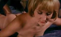 The Indelicate Balance (Better Quality) (1969) screenshot 2