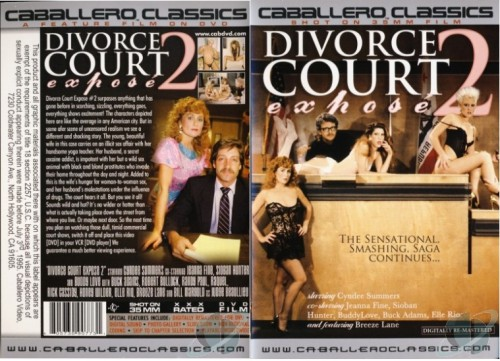 Divorce Court Expose 2 (1987) cover