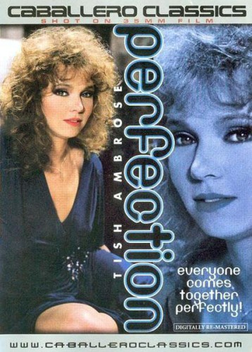Perfection (1985) cover