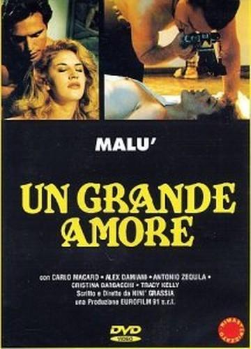 Un grande amore (1995) cover