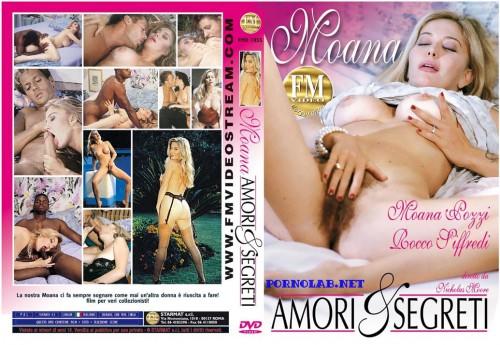 Amori & segreti (1993) cover