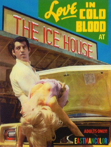 The Ice House (1969) cover