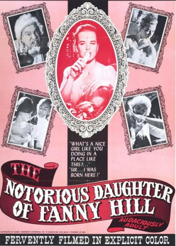 The Notorious Daughter of Fanny Hill (1966) cover