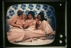 1001 Danish Delights (1972) screenshot 5