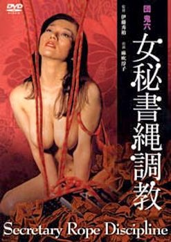 Dan Oniroku onna hisho nawa chyokyo (1981) cover
