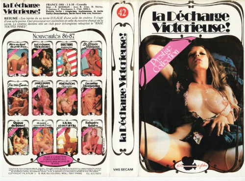 La Decharge Victorieuse (1981) cover