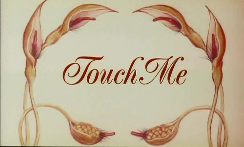Touch Me (1993) cover