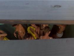 Lemon Popsicle III (1981) screenshot 1