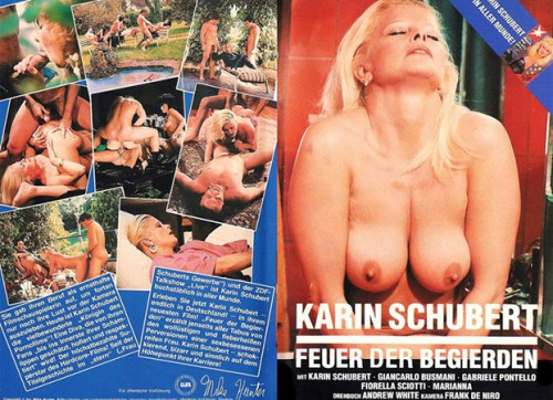 Feuer der Begierden (1986) cover