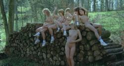 Sechs Schwedinnen auf der Alm (BDRip) (1983) screenshot 4