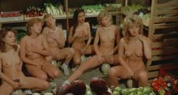 Sechs Schwedinnen auf der Alm (BDRip) (1983) screenshot 6
