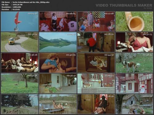 Sechs Schwedinnen auf der Alm (BDRip) (1983) screencaps
