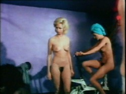 The Sexplorer (1975) screenshot 2