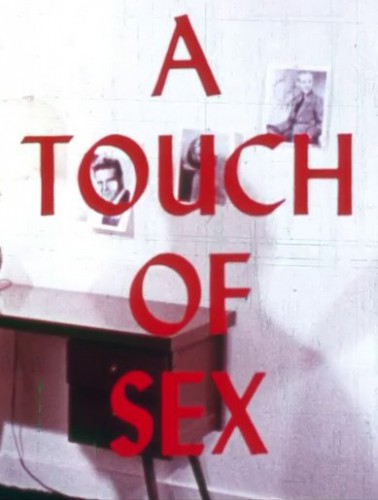 A Touch of Sex (1976) cover