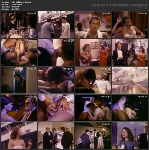 The Budding of Brie (1980) screencaps