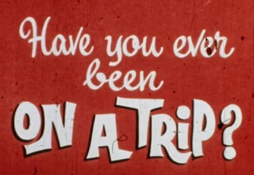 Have You Ever Been On A Trip (1970) cover