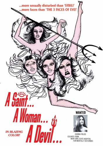 A Saint, A Woman, A Devil (1976) cover