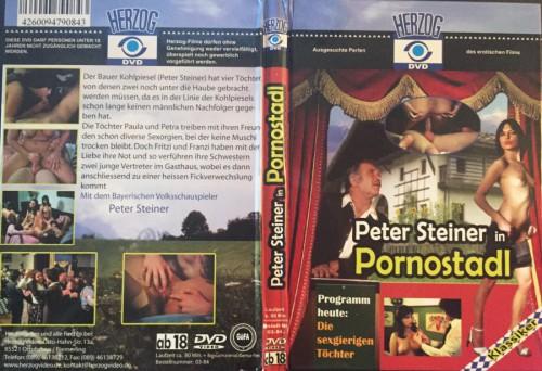 Pornostadl: Die sexgierigen Tochter (1979) cover