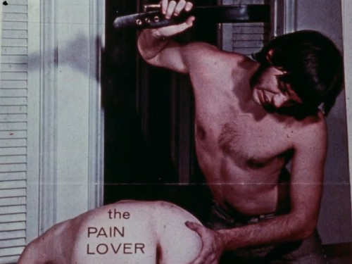 The Pain Lover (1976) cover