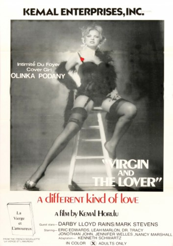 Virgin And The Lover (Better Quality) (1973) cover