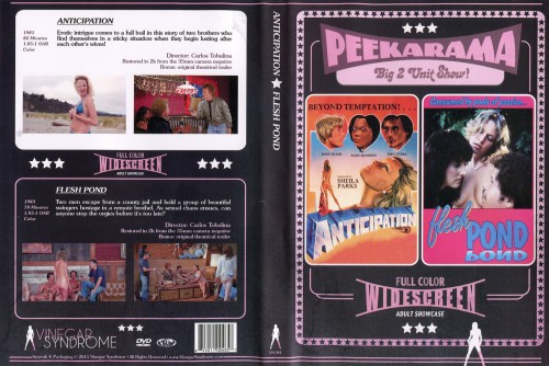 Anticipation (HDRip) (1982) cover