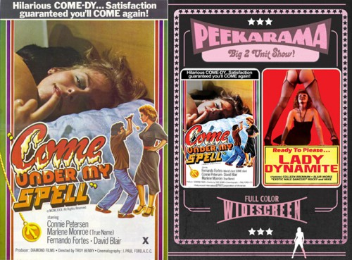 Come Under My Spell (HDRip) (1981) cover